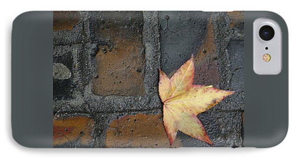Autumn's Leaf IPhone Case by Sherry Dee Flaker