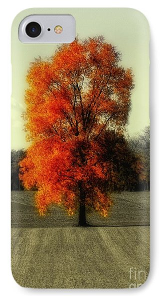 Autumn's Living Tree IPhone Case
