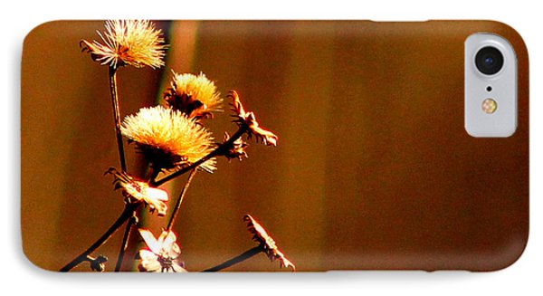 IPhone Case featuring the photograph Autumn's Moment by Bruce Patrick Smith