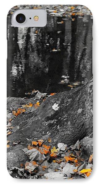 Autumns Reflection IPhone Case