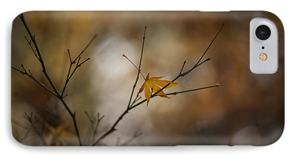Autumns Solitude Phone Case by Mike Reid