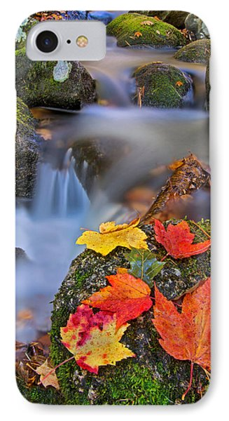 Autumn's Song IPhone Case by Darylann Leonard Photography