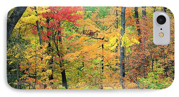 Autumns Splendor IPhone Case by Frozen in Time Fine Art Photography