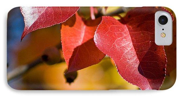 Autumn's Three Graces IPhone Case
