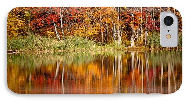 Autumns True Colors Phone Case by Karol Livote