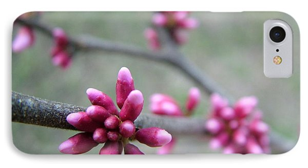 IPhone Case featuring the photograph Awakening Bloom by Kathy Churchman