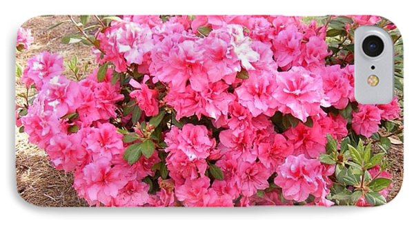 Azaleas IIi IPhone Case by Diane Ferguson