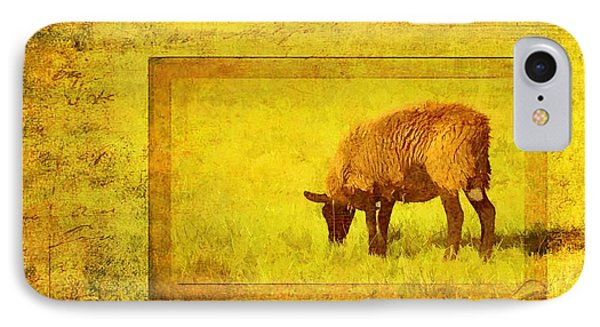 Baabaa Black Sheep IPhone Case by Jan Amiss Photography