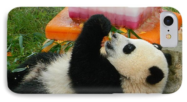 Baby Bao Bao's First Birthday IPhone Case by Emmy Marie Vickers