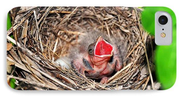 Baby Bird In Nest IPhone Case by Chris Flees