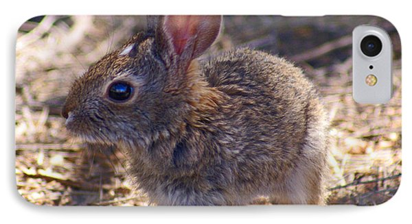 Baby Bunny Phone Case by Heather Coen