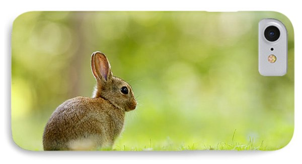 Baby Bunny In The Forest IPhone Case
