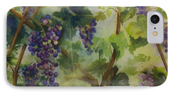 Baby Cabernets In Sunlight IPhone Case by Maria Hunt