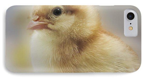 Baby Chicken Phone Case by Darleen Stry