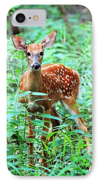 Baby Fawn IPhone Case by Lorna Rogers Photography