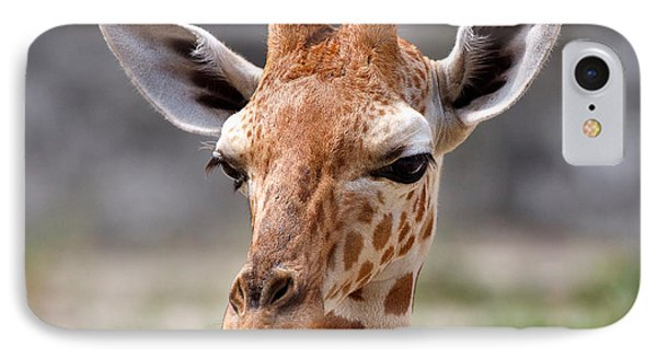 Baby Giraffe Phone Case by Louise Heusinkveld