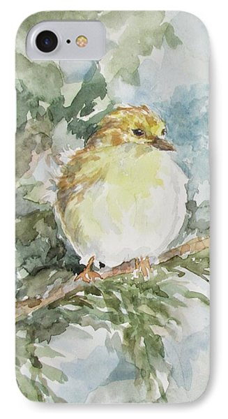 Baby Goldfinch IPhone Case by Gloria Turner