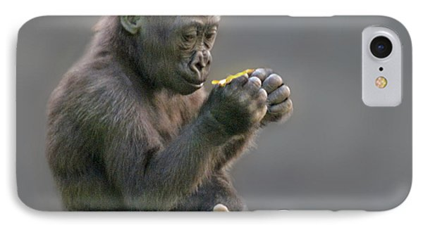 Baby Gorilla Examining A Weed IPhone Case by Jim Fitzpatrick