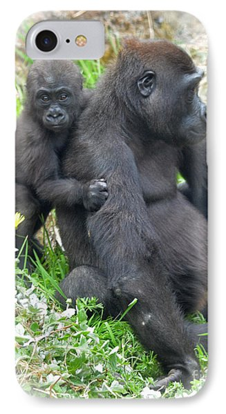Baby Gorilla Holding Onto His Mommy IPhone Case by Jim Fitzpatrick