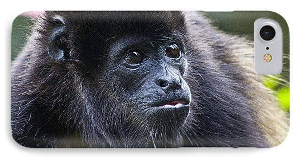 Baby Howler Monkey  Phone Case by Heiko Koehrer-Wagner