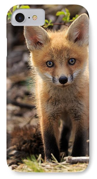 Baby In The Wild Phone Case by Everet Regal