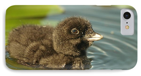 IPhone Case featuring the photograph Baby Loon by James Peterson