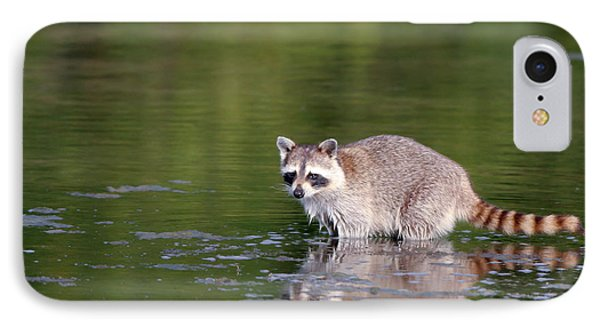 Baby Raccoon In Green Water IPhone Case by Martha Marks