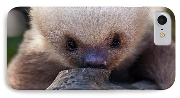 Baby Sloth 2 Phone Case by Heiko Koehrer-Wagner