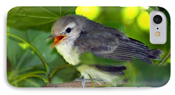 Baby Sparrow In The Maple Tree Phone Case by Karon Melillo DeVega