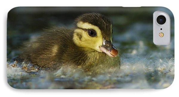 Baby Wood Duck IPhone Case