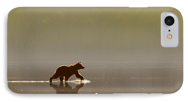 Back Lit Grizzly IPhone Case by Aaron Blaise