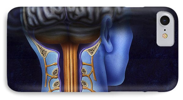 Back Of Brain And Spinal Cord With Head IPhone Case