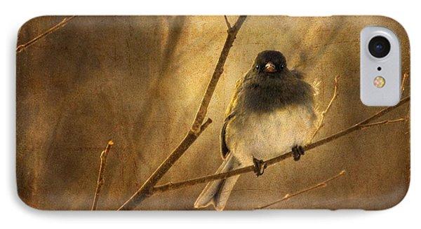 Backlit Birdie Being Buffeted  Phone Case by Lois Bryan