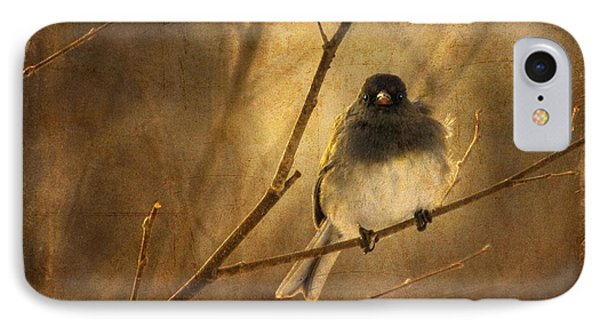 Backlit Birdie Being Buffeted  IPhone Case
