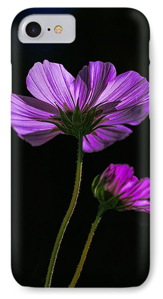 Backlit Blossoms IPhone Case by Marty Saccone