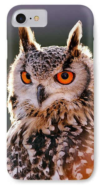 Backlit Eagle Owl IPhone Case by Roeselien Raimond