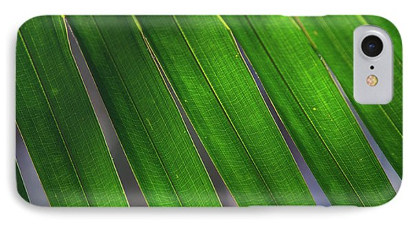 Far North Queensland iPhone 7 Case - Backlit Leaves Of A Palm Tree Form by Paul Dymond