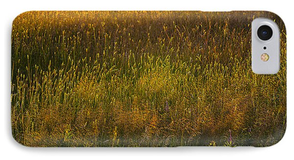 IPhone Case featuring the photograph Backlit Meadow Grasses by Marty Saccone