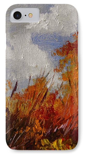 Backside Of The Pond IPhone Case by John Williams