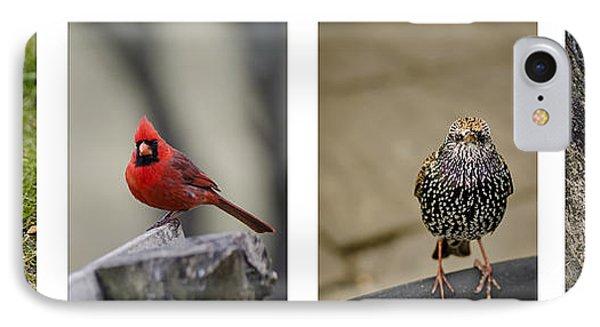 Backyard Bird Series Phone Case by Heather Applegate