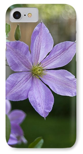 Backyard Clematis IPhone Case by Morris  McClung