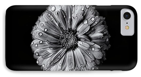 IPhone Case featuring the photograph Backyard Flowers In Black And White 10 After The Storm by Brian Carson