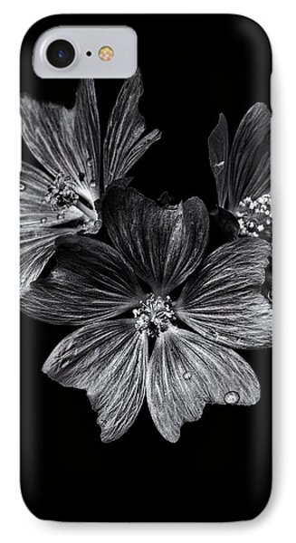 Backyard Flowers In Black And White 11 After The Storm IPhone Case