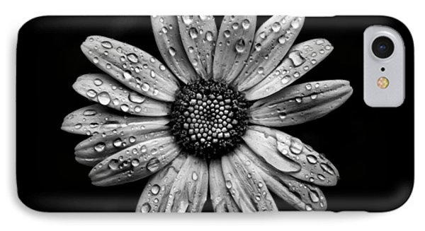 Backyard Flowers In Black And White 16 After The Storm Phone Case by Brian Carson