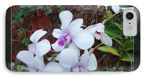 IPhone Case featuring the photograph Backyard Orchid Two by Ginny Schmidt