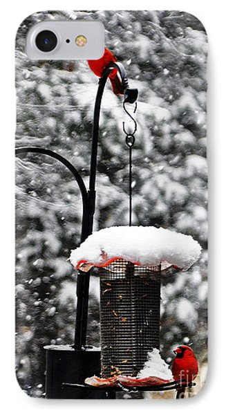 Backyard Winter Wonderland 2  IPhone Case by Lydia Holly