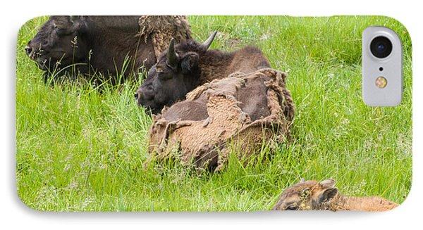 Bison Bad Fur Day IPhone Case