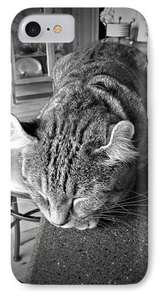 Bad Cat Phone Case by Susan Leggett