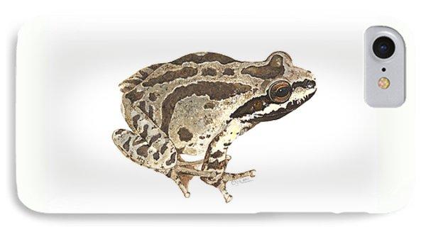 Baja California Treefrog IPhone Case by Cindy Hitchcock
