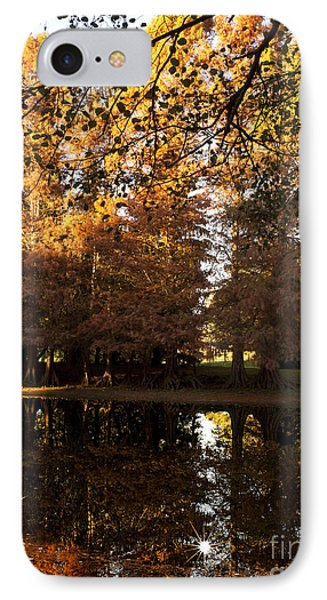 Bald Cypress Autumn IPhone Case by Lee Craig